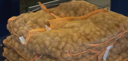 Utilizzo delle reti per il consolidamento di pallet alimentari